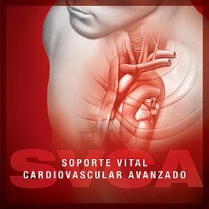SVCA Torrevieja-Vinalopo 2020